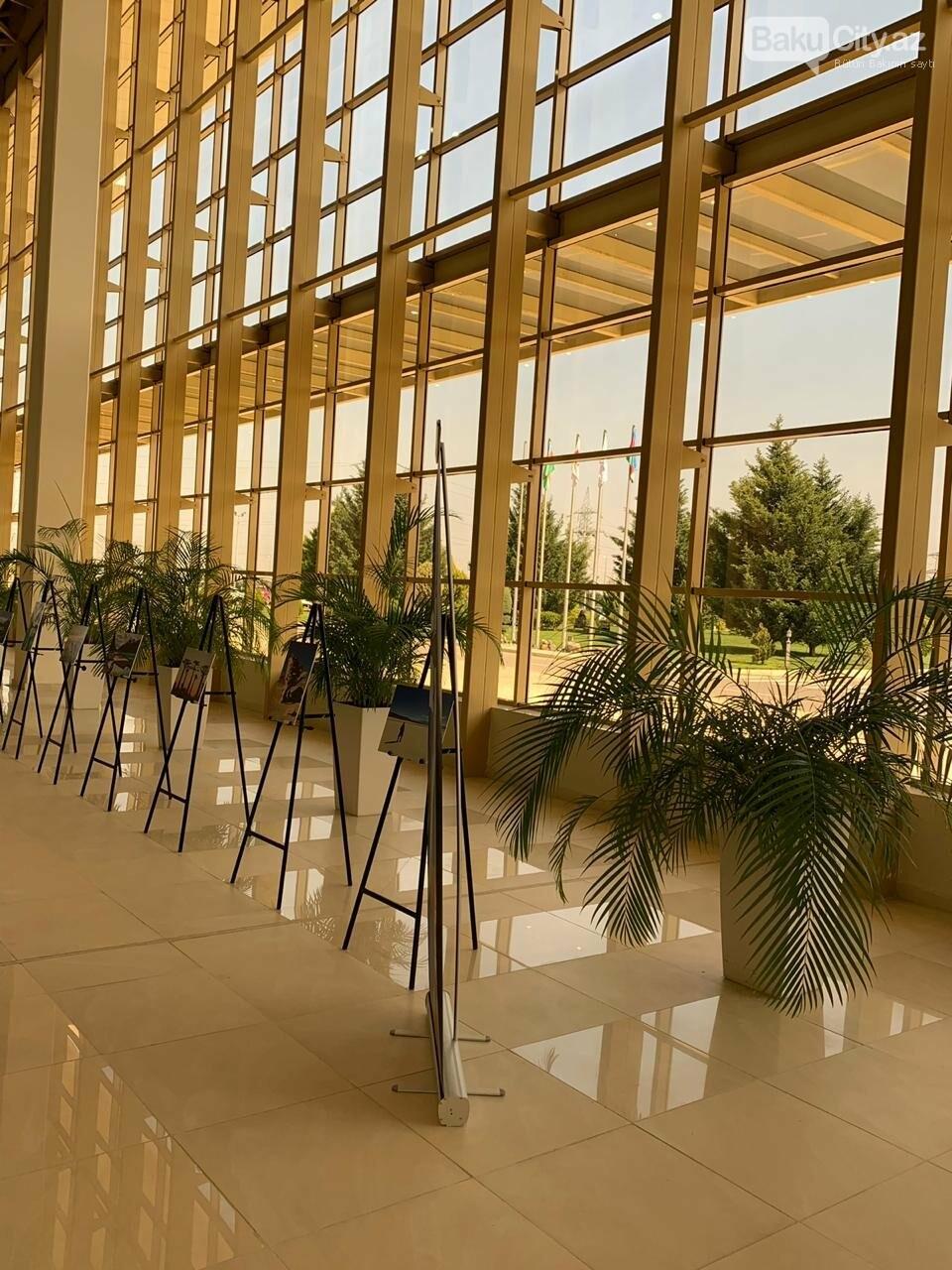 Bakıda keçirilən AITF 2019 davam edir - FOTO, fotoşəkil-15