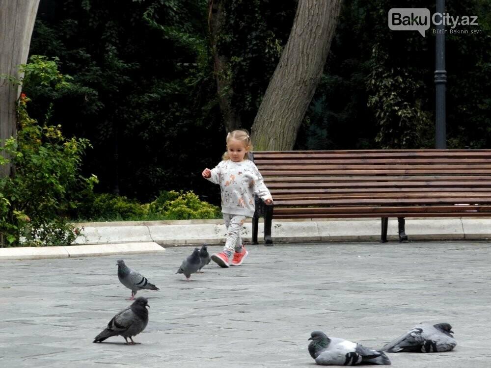 """Uşaqlar və böyüklər üçün: """"Zabitlər Parkı"""" bütün gözəlliyi ilə - FOTOREPORTAJ, fotoşəkil-7"""