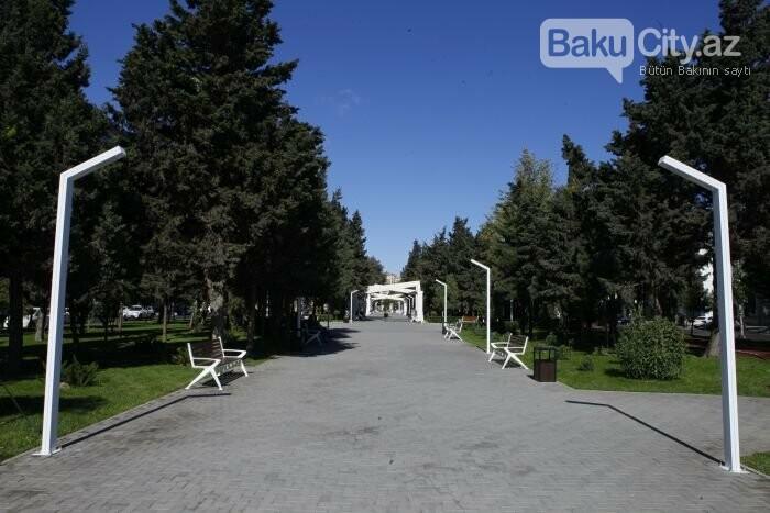 Bakının yenilənən Atatürk prospekti: Mərkəzdə istirahət üçün ideal məkan - FOTOREPORTAJ, fotoşəkil-15