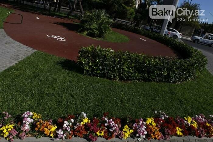 Bakının yenilənən Atatürk prospekti: Mərkəzdə istirahət üçün ideal məkan - FOTOREPORTAJ, fotoşəkil-16