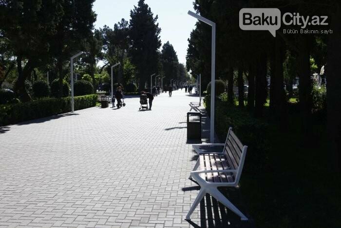 Bakının yenilənən Atatürk prospekti: Mərkəzdə istirahət üçün ideal məkan - FOTOREPORTAJ, fotoşəkil-3