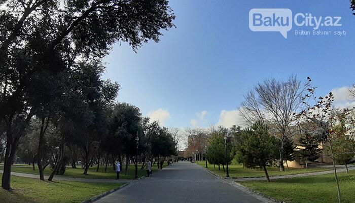 Zorge parkının tarixçəsi, bakılı kəşfiyyatçının iti baxışları - FOTO, fotoşəkil-5