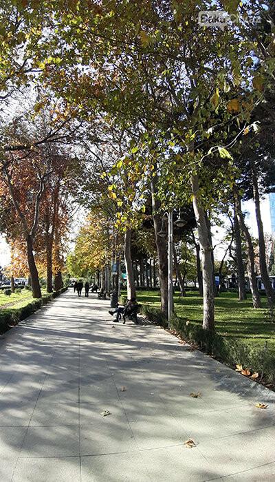 Səməd Vurğun parkı: Keçmiş zoopark, proletariat rəhbəri, Ukrayna qraniti - FOTO, fotoşəkil-6
