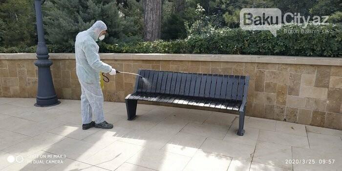 Bakı parklarında dezinfeksiya işləri aparılır - FOTO / VİDEO, fotoşəkil-3