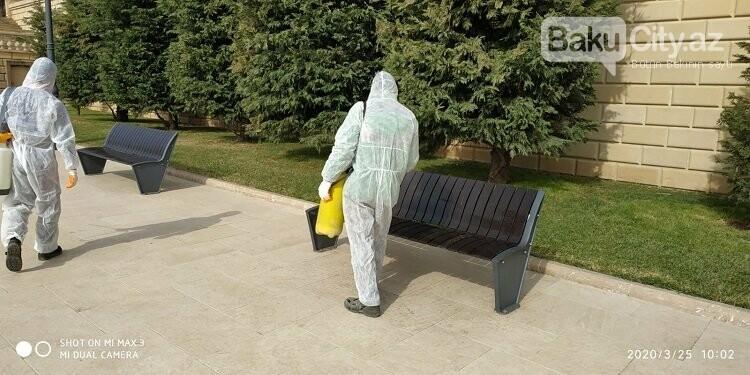 Bakı parklarında dezinfeksiya işləri aparılır - FOTO / VİDEO, fotoşəkil-4
