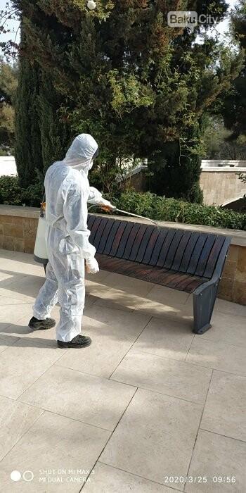 Bakı parklarında dezinfeksiya işləri aparılır - FOTO / VİDEO, fotoşəkil-2